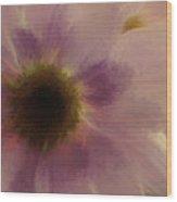 Floral Impressions Lix Wood Print