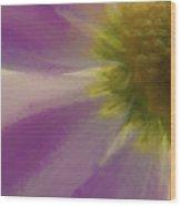 Floral Impressions Lviii Wood Print