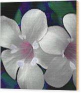 Floral Photo A030119 Wood Print