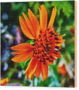 Floral Rush Hour Wood Print