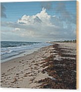 Florida Beach With Gentle Waves And Wood Print