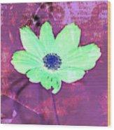 Flower 2918 Wood Print