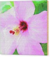 Flowers Of Florida I Wood Print