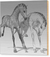 Foals Black And White Bleached Wood Print