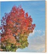 Foliage In Flanders Wood Print