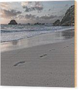 Follow Me Thoughtful Coastal Sunrise Wood Print