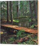 Forest Foot Bridge Wood Print