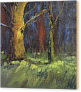 Forest Trees 1 Wood Print