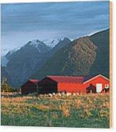 Fox Glacier Looms Over Plain Wood Print