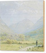 Franconia Notch Wood Print