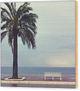 French Riviera Wood Print