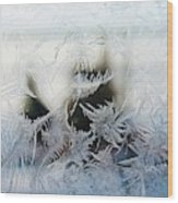 Frost From Canada Wood Print