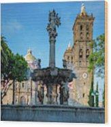 Fuente De Puebla Wood Print