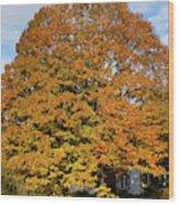 Full On Orange Wood Print