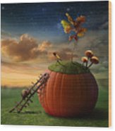 Funny Poster With Snail-astronomer And Wood Print