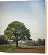 Garden Of Delights Wood Print