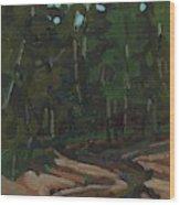 Gargantua Harbour Brook Wood Print