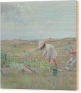 Gathering Flowers, Shinnecock, Long Island, 1897 Wood Print