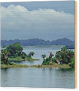 Gatun Lake Islands Wood Print