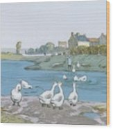 Geese By The River Loing 04 Wood Print