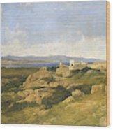 General Garibaldi S Residence At Caprera  Wood Print