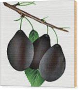German Prunes Fruit Vintage Art Wood Print