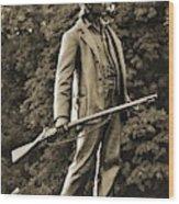 Gettysburg Battlefield - John Burns Wood Print