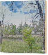 Ghost Town Kansas Wood Print