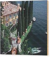 Giacomo Montegazza Wood Print