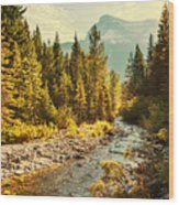 Glacier National Park, Montana Wood Print