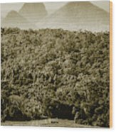 Glass House Mountains Wood Print