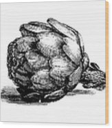 Globe Artichoke   Antique Culinary Wood Print