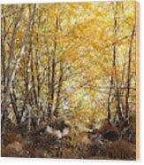 Golden Autumn Light Wood Print