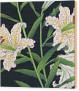 Golden-banded Lily - Digital Remastered Edition Wood Print