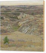 Golden Dakota Prairie Reverie Wood Print