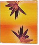 Golden Duo Water Lilies Wood Print