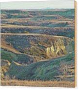 Golden Grasslands Enchantment Wood Print