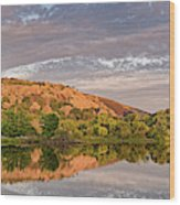 Golden Hour Contemplation At Moss Lake - Enchanted Rock Fredericksburg Texas Hill Country Wood Print
