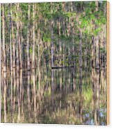Golden Hour Serenity Wood Print