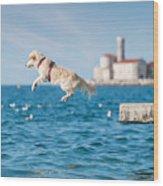 Golden Retriever Dog Jumping Into Sea Wood Print