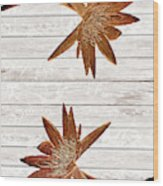 Golden Water Lily Duo Wood Print