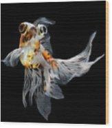 Goldfish Isolated On Black Background Wood Print