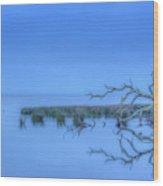 Good Morning Sea Wood Print