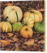 Gourds Grounded Wood Print