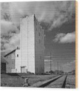 Grain Elevator, 2001 Wood Print
