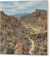 Grapevine Mountain Trail Wood Print