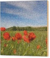 Grassland And Red Poppy Flowers 3 Wood Print