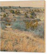 Grassy Ridge Reverie Wood Print