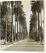 Grayscale Image Of Beverly Hills Wood Print