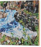 Great Falls Waterfall 201903 Wood Print